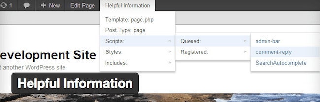 helpful information wordpress plugin for wordpress developers
