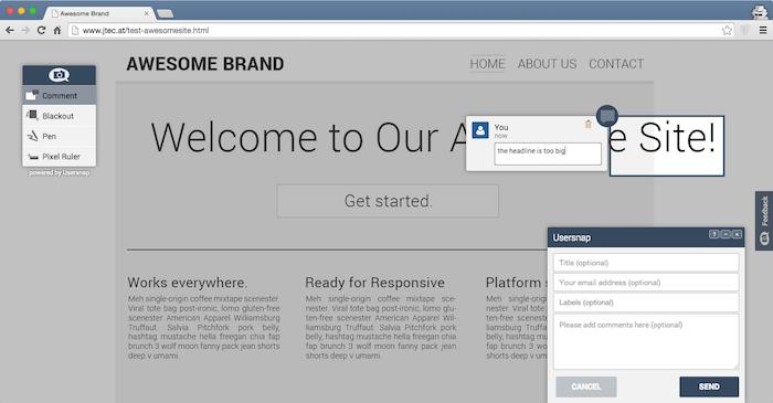 customer feedback website usersnap and freshdesk