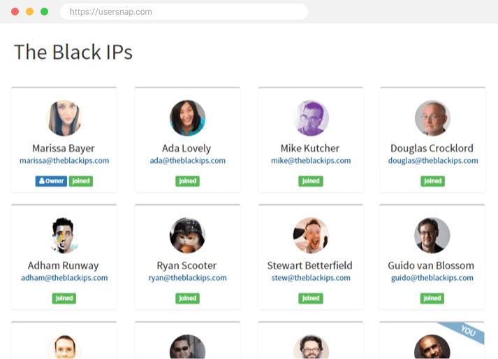 user feedback team
